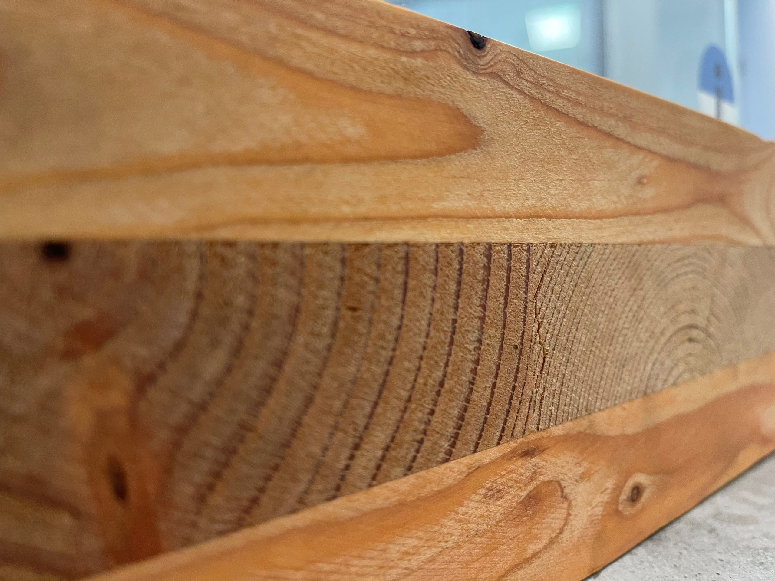 mass timber for construction building material